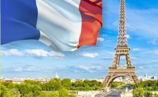 Французский язык /Испанский язык
